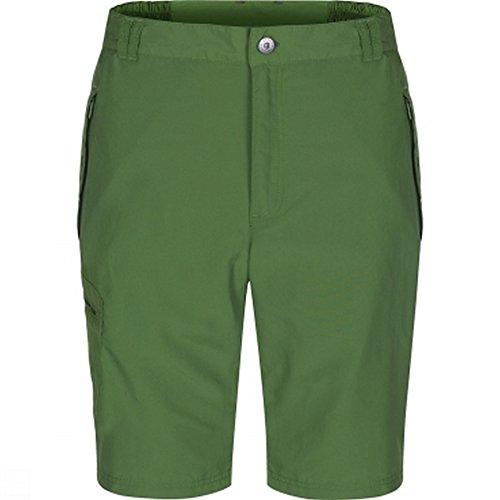 Regatta Herren Leesville Shorts Alpine Green