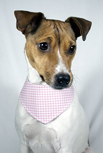Halstuch Hund Rosa Kariert - 4
