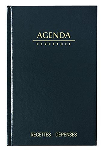 Lecas Agenda Recettes/Dépenses 1 Page par Jour 14 x 22 cm Année 2018
