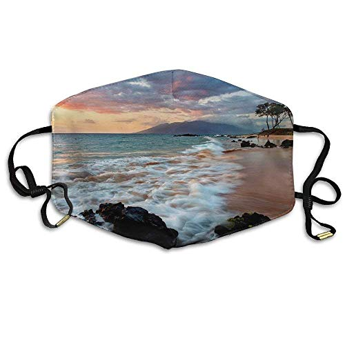 EighthStore Wailea Makena Beach Maui Hawaii Beautiful Sunset Printed Mouth Masks Unisex Anti-dust Masks Reusable Face Mask Mouth-Muffle Mund Maske