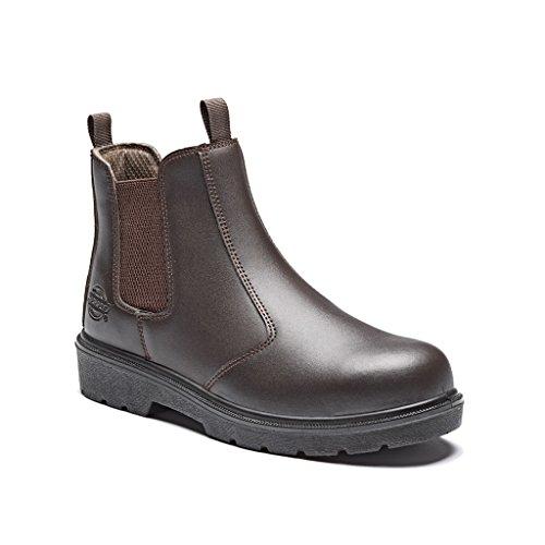 dickies - S1P - Stivali Antinfortunistiche Senza Lacci - Uomo (43 EU) (Marrone)