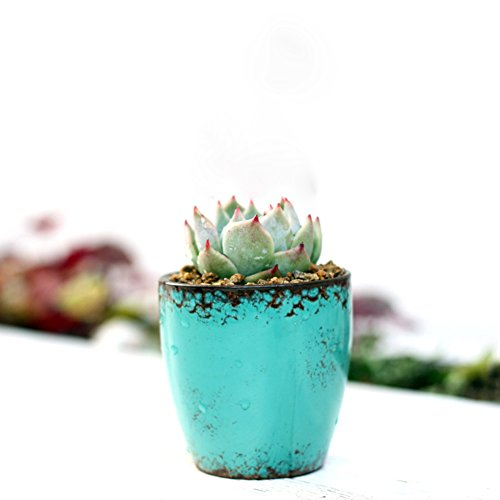 westeng-mini-succulent-plants-flower-pot-retro-container-home-office-ceramics-decor-planter-desk-sto