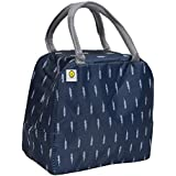 Yellow Weaves™ Insulated Travel Lunch/Tiffin/Storage Bag for Office, College & School