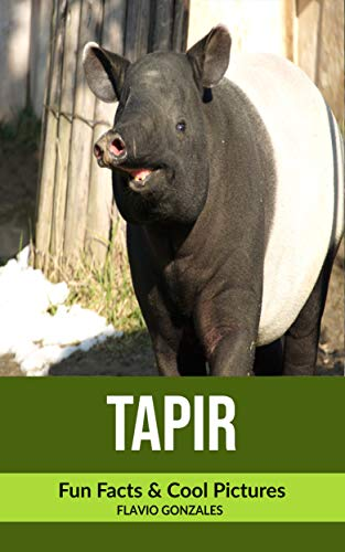 Tapir: Fun Facts & Cool Pictures (English Edition)