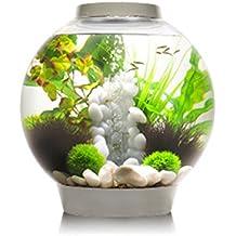 Aquarium boule for Acheter aquarium boule