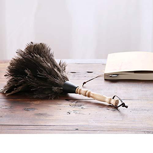 ZHANGY Hand Duster-perfekt, um Decke Klavier, Armaturenbretter, Bücherregale, Haustiere zu Reinigen,small