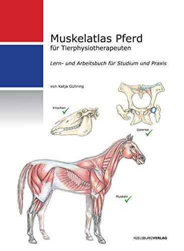 Muskelatlas Pferd: für Tierphysiotherapeuten