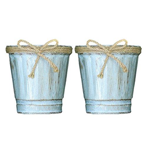 Lembeauty - Vasetti per piante grasse a forma di secchio di ferro, stile rustico, per decorazione di giardino, casa o scrivania, confezione da 2 pezzi C
