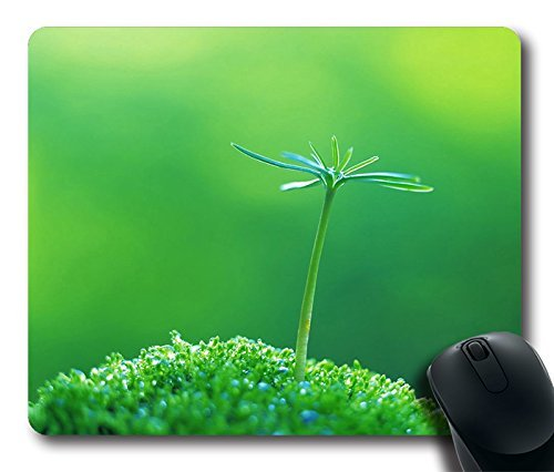Comfortable Handle Mouse Pad Printed On A Flowe