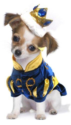 Hund Kostüm. Little Prince in Blau Samt mit Gold Krone. Größe (Kostüme Gold Crown)