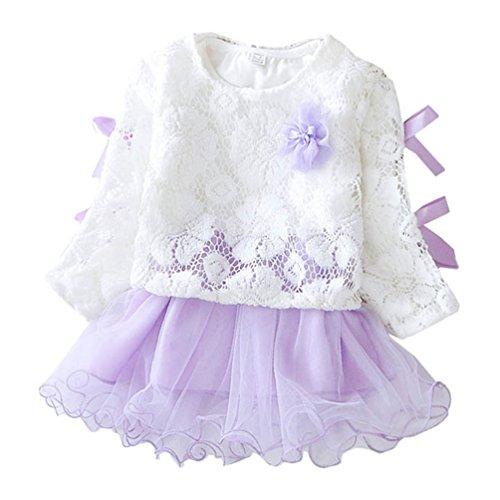 Waboats Baby Mädchen Prinzessin Kleid Frühling Herbst Party Kostüm Kleidung 2T Lila (2t Prinzessin Kostüme)