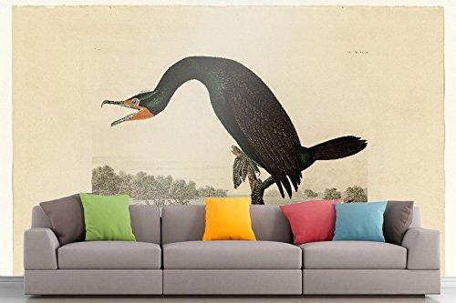 The Museum Outlet Roshni Arts®-kuratierte Art Wall Mural-Audubon (- Florida Kormorane-Teller 252| selbstklebend Vinyl Ausstattung Décor Art Wand-121,9x 91,4cm
