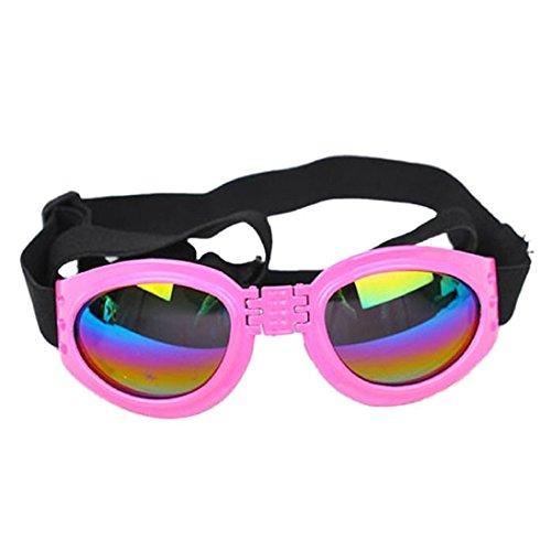 GWD Haustier-Mode-Brille faltbare Katze winddicht Regenschutz Sonnenbrillen Sonnenbrille Pet Supplies
