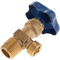 H HILABEE Regulador de Botella de Gas de Válvula de Cilindro de Argón Pequeño Wp-15 Regulador de Botella de Válvula