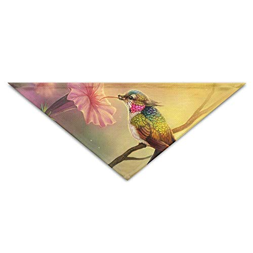 Gxdchfj Hummingbird Triangle Pet Scarf Dog Bandana Pet Collars Dog Cat - Birthday (Top 10 Awesome Halloween Kostüme)