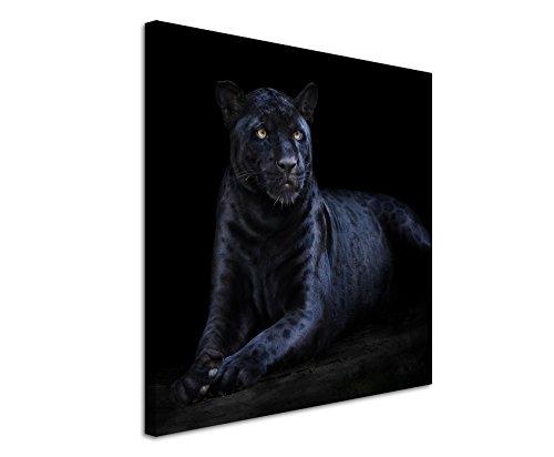 Leinwandbilder quadratisch 60x60cm Tierbilder - Seltener schwarzer Jaguar -