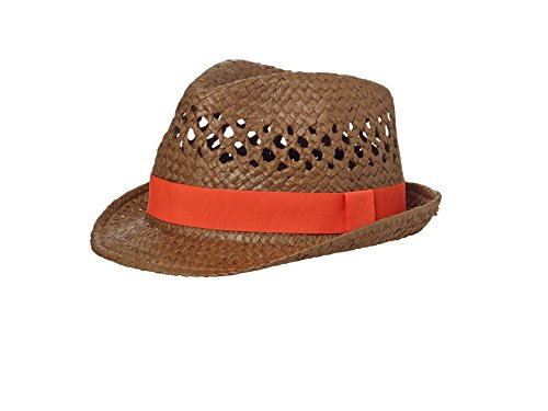 JAMES & NICHOLSON Summer Style Hat, Chapeau de Cow-Boy Mixte
