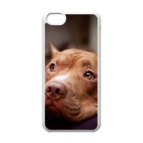 LP-LG Phone Case Of Pit Bull Terrier For Iphone 5C [Pattern-6] Pattern-6