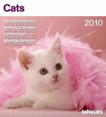 Cats 2010 Weekly Postcard Calendar