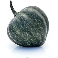 1 Eichelkürbis (Table Acorn) grün ca. 0,5 bis 1,0 Kg, ca. 10 bis 20 cm lang u. spitz zulaufend - Deko- und Esskürbis