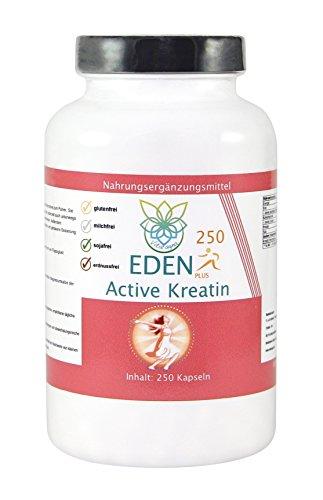 VITARAGNA Eden Active Kreatin Plus 250 Kapseln, reines, hochwertiges Creatin Monohydrat bzw. Creatine Monohydrate, clean