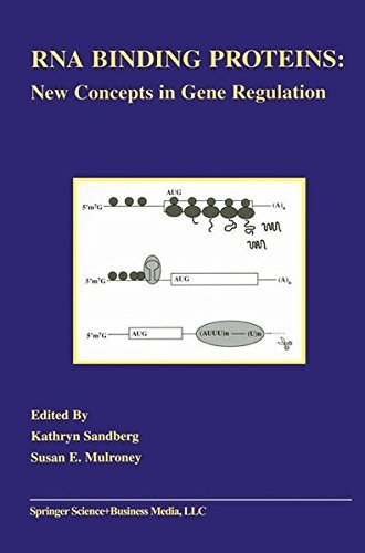 Rna Binding Proteins: New Concepts In Gene Regulation (endocrine Updates Book 16) por Kathryn Sandberg epub
