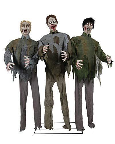 3-köpfige Zombie Horde als Halloween Figuren Animatronic 185 ()