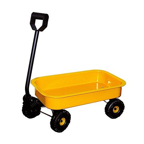 small foot company (Handy - Carro de Chapa