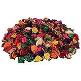 Zevora Natural Home Decor Multi Color Potpourri Leaves for Indoor Outdoor Decoration, Showpiece, Vase Fillers (100 gm Pack)