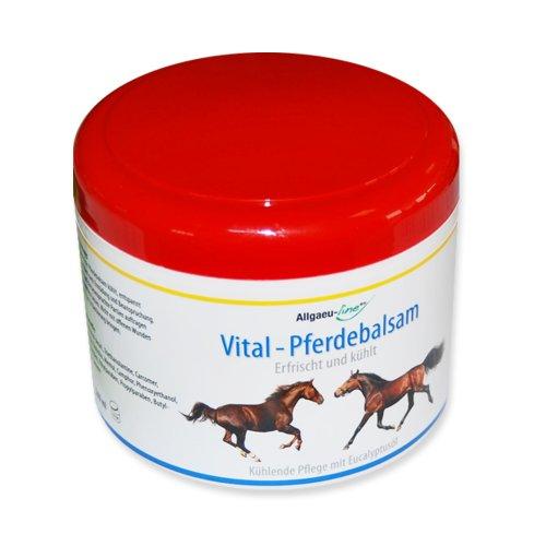 Pferdebalsam kühlend 500 ml, belebt und kühlt, Sportsalbe