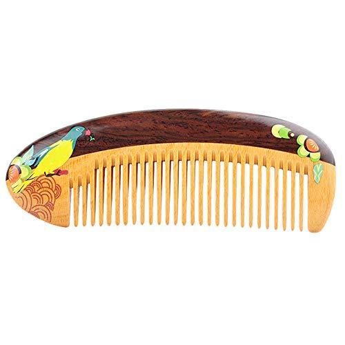 Hölzerner Haar-Kamm-Geldbeutel-Kamm für Frauen, kleiner antistatischer Detangling-Taschen-Kamm mit dem Karikatur-Papageien gemalt(Papagei)
