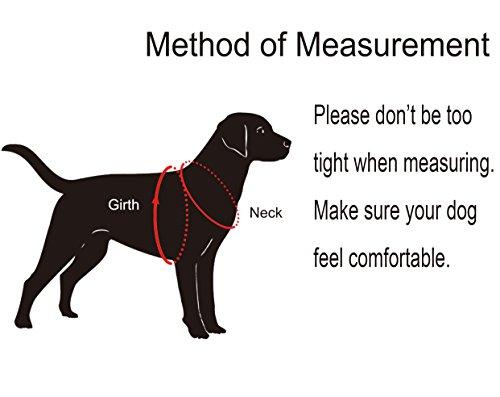 MIDWEC Das Mittelgroße Hunde Haustier einstellbare weiche Brustgeschirr in vier Größen – Schwarz (S) - 2