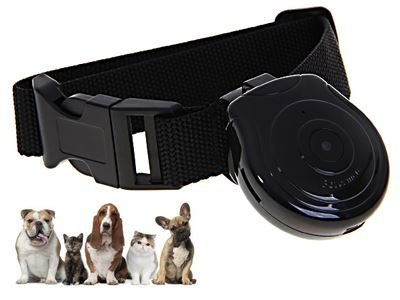 iXium® Pet Cam Camera Dog Cat Record Collar Pets Eye View with Phone ID Tag 1