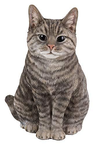 Real Life Sitting Tabby Cat | Ho...