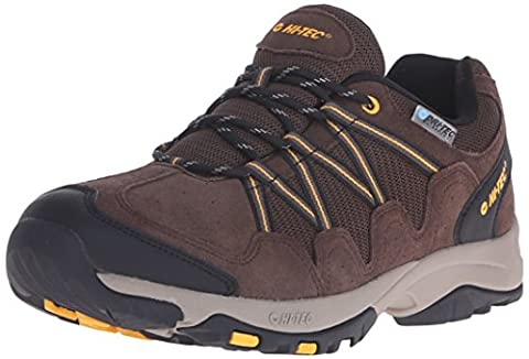 Hi-Tec Men's Dexter Low WP Multisport shoe, Chocolate/Core Gold, 10.5 M US