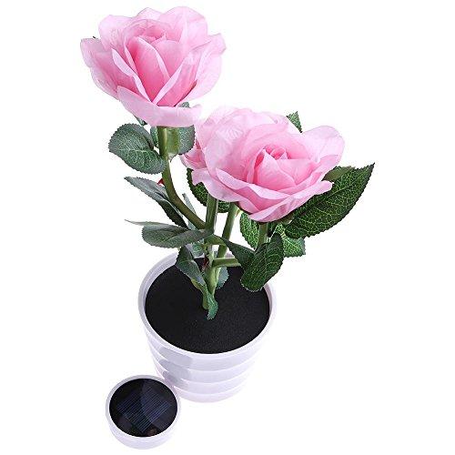 Exterieur Pot Fleur Lumineux