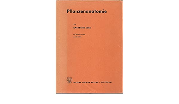Pflanzenanatomie: Amazon.de: Katherine Esau: Bücher