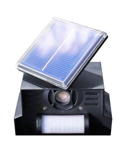 Royal Gardineer Katzenschreck Solar: Hunde-, Katzen- und Vogelschreck TS-707.l, Solar (Katzenscheuche)