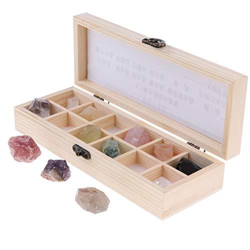 perfeclan 12x Muestra de Piedras Preciosas Minerales de Mundo con Caja