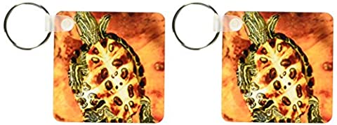 3dRose Red Ear Slider turtle Hatchling - NA02 DNO0535 - David Northcott - Key Chains, 2.25 x 4.5 inches, set of 2