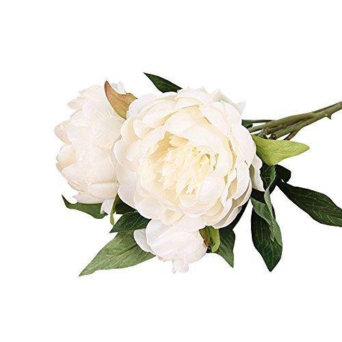 Jia HU 1 Lot Fleurs Artificielles Pivoine de Pivoine arrangements plantes d'intérieur Bureau Décoration extérieure blanc