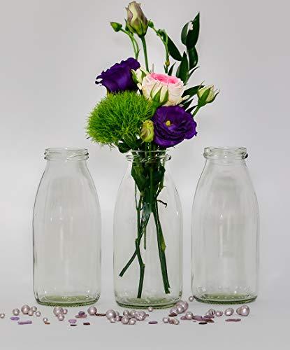 12 x Glasfläschchen im Landhausstil Flasche Vase Tischvasen Glasflaschen Dekoflaschen Väschen Vasen Glasvasen (12 Stück)