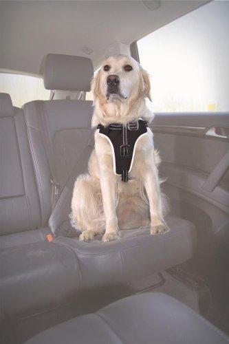 Trixie Sicherheitsgeschirr Dog Protect, XL: 80–100 cm/25 mm, schwarz