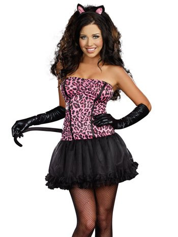 Sexy Kiss Me Kitty Pink Leopard Costume Dress Adult Small 2-6 Sexy Pink Kitty