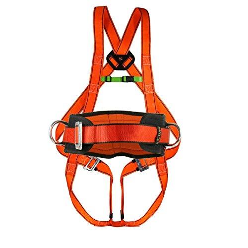 Auffanggurt Rückenstütze Klettergurt Geschirr Fallschutzgurt Absturzsicherung Gurt Seil