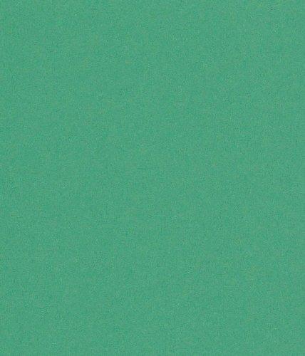 250 fogli DIN A5 verde abete colorato 160g/m² Ufficio di carta. Alta qualità colorata carta pizzo per copia Inkjet Laser. Prima classe per Flyers Newsletter poster fax in arrivo avvisi importanti sistemi di memo ordine di avvertimento