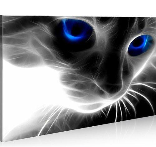 islandburner Bild Bilder auf Leinwand Magic Cat 1p Katze XXL Poster Leinwandbild Wandbild Dekoartikel Wohnzimmer Marke