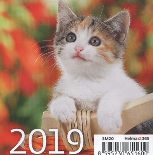 Kalendarz 2019 biurkowy mini kotki