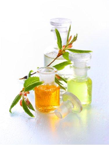 Lomi-Lomi miscela di olio – 250 ml – qualità bio – olio da massaggio – puramente vegetale – Neutro – Qualità professionale