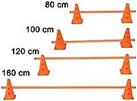 agility sport pour chiens - haie de coordination, 23 cm, jalon: 100 cm, orange - 2x MZK23o 1x 100o